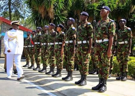 How to be a Cadet in Kenya, Qualifications, Training and