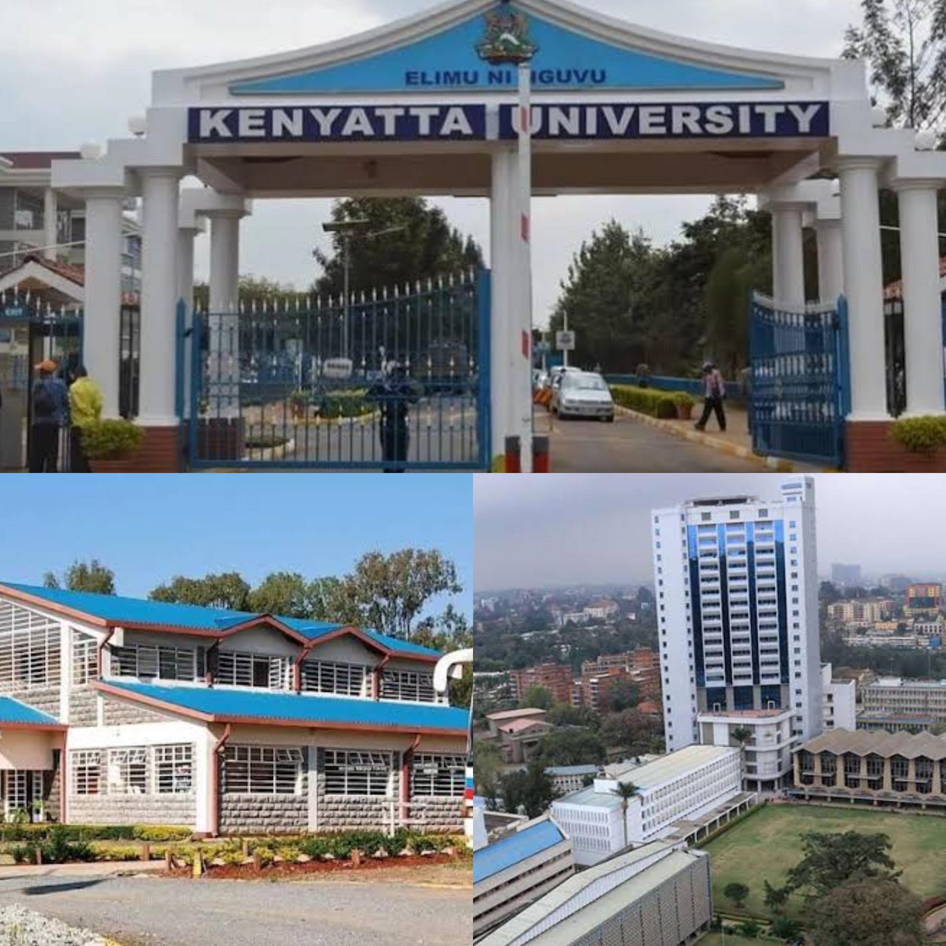 Best universities in Kenya 2019 – Jambo News