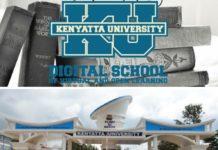 Kenyatta University Digital School Of Virtual And Open Learning Fee Structure